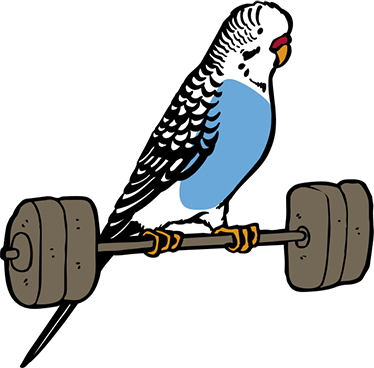 TENSTICKERS. インコウエイトサッカーデカール. 重量挙げのインコの特徴を持つ装飾的な鳥の壁アートステッカーデザイン。あらゆるスペースに対応できる素晴らしいデザイン。
