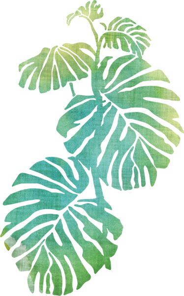 TenStickers. Monstera Deliciosa Wall Sticker. Add a touch of nature to your home decor with this vibrant green Monstera Deliciosa wall sticker, perfect for decorating your bedroom, living room, kitchen and more!