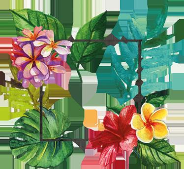 TenStickers. Adesivo decorativo Flora Tropicale. Adesivo decorativo per celebrare i colori, le forme e l'allegria della flora tropicale.Uno sticker decorativo per decorare casa.