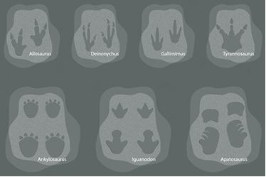 TENSTICKERS. 恐竜の足跡キッズウォールデカール. さまざまな恐竜の足跡が入ったこのクールな恐竜の壁のタトゥーは、子供部屋に最適で、子供たちの発見の精神を呼び覚まします!