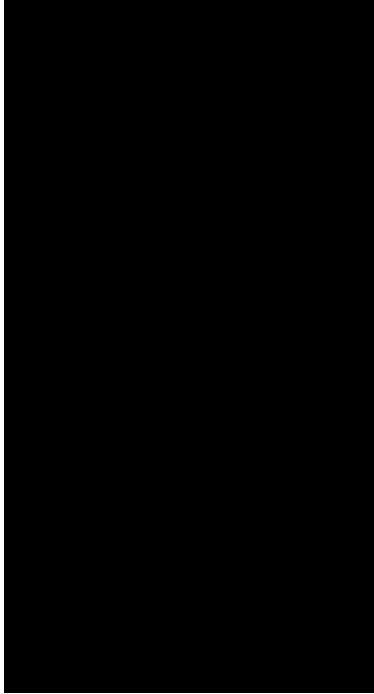 """TenVinilo. Vinilo decorativo salto vive el momento. Vinilo dibujo con la silueta de una persona haciendo puenting junto a la frase """"Seize the day"""" o """"Vive el momento""""."""