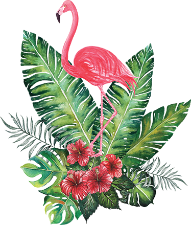 TenVinilo. Vinilo tropical Flamingo. Vinilos decorativos de inspiración vegetal ideales para decorar cualquier rincón de tu casa con fauna y flora exótica.