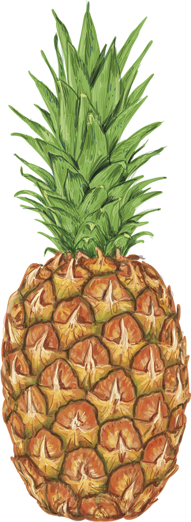 TenStickers. Pineapple colorful food wall decal. Come take a look at our beautiful food wall sticker that has a pineapple on it. We have +10,000 happy customers on the website.