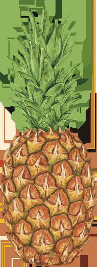 TenStickers. Wandtattoo große Ananas. Fruchtig, frisches Wandtattoo mit einer echt wirkenden Ananas, perfekte Dekorationsidee für die Küche.