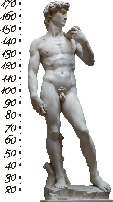 TenStickers. Sticker toise le David. Suivez l'eévolution de la croissance de votre enfant avec ce sticker mètre représentant le célèbre oeuvre de Michel Ange.