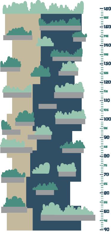 TenStickers. Adesivo infantile metro bosco verticale. Adesivo murale per bambini ottimo per decorare la stanza dei più piccoli, ma in modo funzionale, potendo così controllare la crescita dei tuoi figli.