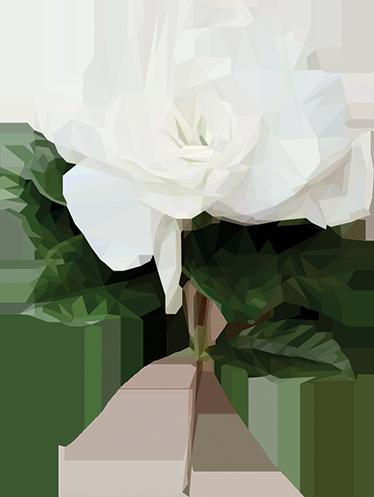 Tenstickers. Valkoinen kukka sisustustarra. Valkoinen kukka sisustustarra. Ihana isokukkainen sisustustarra piristämään huoneen kuin huoneen sisustusta. Skandinaavinen tyyli.
