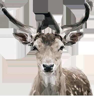 TenVinilo. Vinilo pared retrato ciervo poligonal. Vinilos decorativos de animales con una ilustración exclusiva de Mai ideal para decorar cualquier estancia de tu casa.
