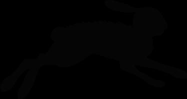 TenStickers. Autosticker rennende haas. Autosticker voor hardlopers waarvan de afbeelding een snelle rennende haas is. Ideaal om uw auto mee te versieren.