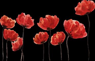 TenVinilo. Vinilo decorativo amapolas acuarela. Murales decorativos en adhesivo de óptima calidad con una representación de un campo de flores.