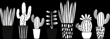 TenStickers. Muursticker sierrand cactussen. Zelfklevende muursticker behangrand met tekeningen van verschillende planten en cactussen in hun potten, in zwart en wit.
