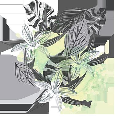TenVinilo. Vinilo decorativo plantas splatter. Murales y vinilos con un moderno diseño en el que distintas plantas tropicales en tonos grises se agolpan.