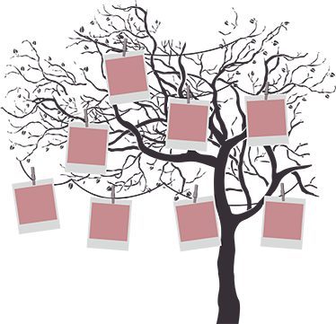 TenStickers. Family tree tree wall decal. Let us make your home a wounder with our adhesive family tree wall art that you can place photo collection on. It is available in any size needed.