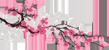 Vinilo Flor De Cerezo Primavera Tenvinilo