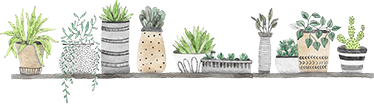 TenStickers. Shelf plants plant wall decor. A plant wall sticker design made of shelf plants drawing in flower pots. It is available in any desires size and it application is easy.