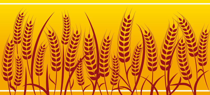 TenStickers. Wheat field border sticker. Fill your kitchen walls with this amazing decorative wall border decal with wheat field pattern. Customizable sizes. Zero residue upon removal.