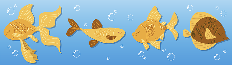 TenStickers. Golden Fish Children Animal Wall Sticker. Is your child or baby fascinated by all the animals in the sea? With this marine themed sticker a part of the ocean will move into your child's room.