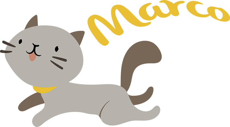 TenStickers. Cat and Name Customisable Sticker. Add a jumping cat to your wall with this fantastic custom sticker! Discounts available. Cat lovers everywhere should unite on this one!