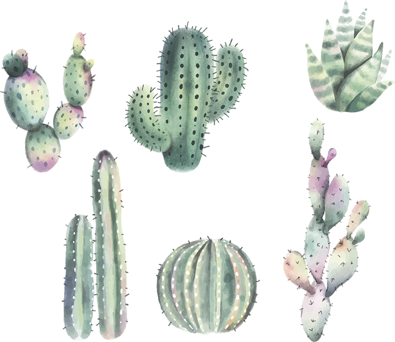 TenStickers. Nordic Style Cactus Wall Stickers. Decorate your home with this fantastic cacti themed wall sticker! Personalised stickers.