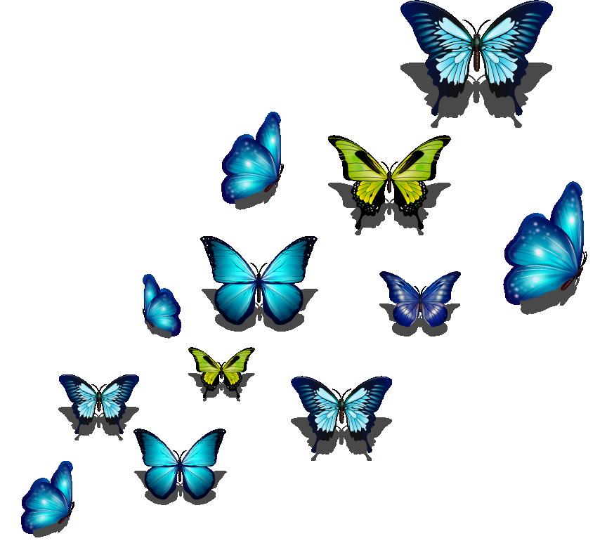 TenStickers. Muurstickers tienerkamer Kleurrijke vlinders. Kleurrijke vlinders muursticker en vlinders muurstickers in alle maten. Geniet van onze vrolijke vlinders stickers en vlinders muur decoratie!