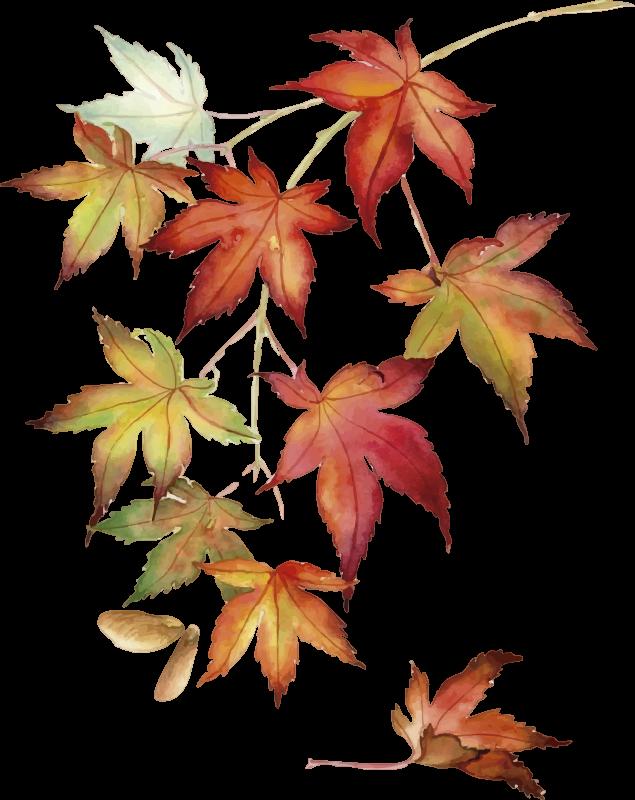 TENSTICKERS. カエデの葉の壁のステッカー. この素晴らしい壁アートステッカーで日本のカエデの木に敬意を表します! 10%オフにサインアップしてください。