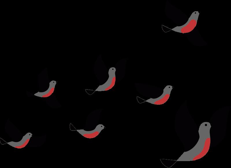 Tenstickers. Lentävät linnut kannettava tarra. Koristele kannettavaa tietokonetta tämän koriste-tarran kanssa, joka kuvaa lentäviä lintuja. Saatavana erikokoisina ja helppokäyttöisinä.