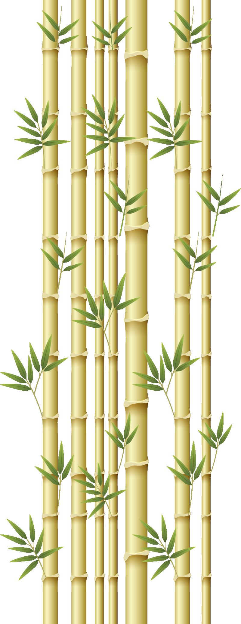 TenStickers. Sticker Maison Porte Bambou. Découvrez comment décorer votre maison ainsi que vos porte de manière originale avec notre sticker porte de bambou. Achat Sécurisé et Garantit.