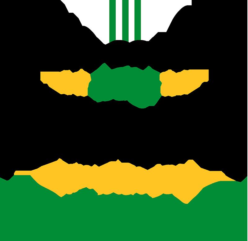 """TenVinilo. Vinilo deporte soy del Betis. Vinilo adhesivo para los seguidores del Betis formado por el texto """"No solo soy perfecto, también soy bético"""". Compra Online Segura y Garantizada."""
