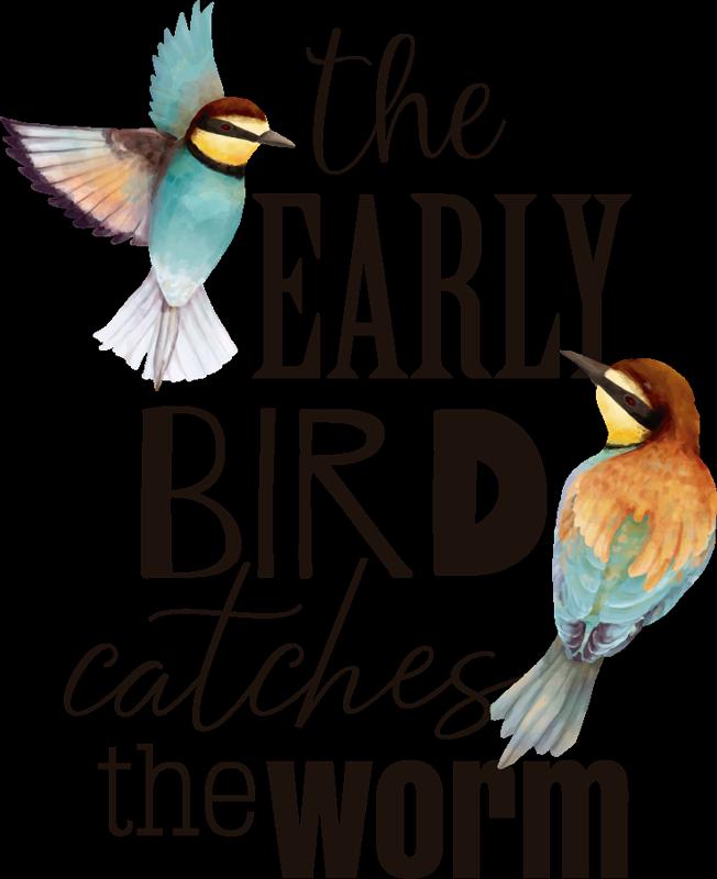 TenStickers. Sticker de Proverbe l'Oiseau Avance. Découvrez comment décorer votre maison avec ce sticker mural oiseau et sa belle citation rien que pour vous ou encore votre enfant. Application Facile