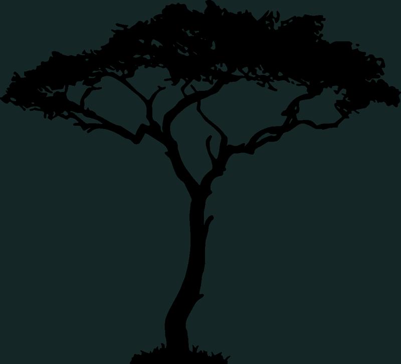 TenVinilo. Vinilo para salón Árbol de África. Original pegatina adhesiva formada por el diseño de un árbol típico de la sabana africana. Compra Online Segura y Garantizada.