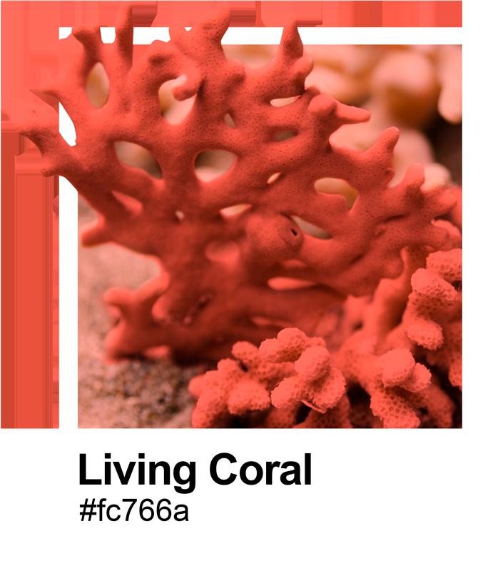 Tenstickers. Pantone elävä koralli merimies. Alkuperäinen pantone-elävä korallimeri-meriseinätarra kodin tai toimistotilan sisustamiseen. Saatavana missä tahansa vaaditussa koossa ja helppo levittää.