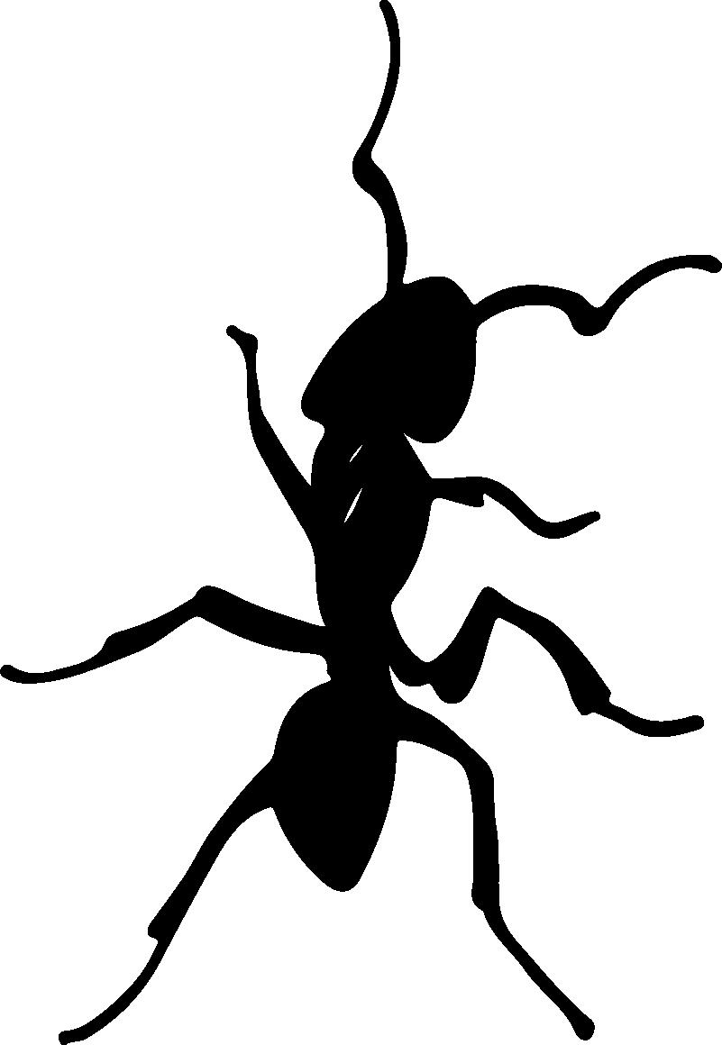 TenVinilo. Vinilo pared ilustración hormiga. Pegatina adhesiva formada por la ilustración de un hormiga totalmente personalizable en cuanto a medidas y color. Precios imbatibles.