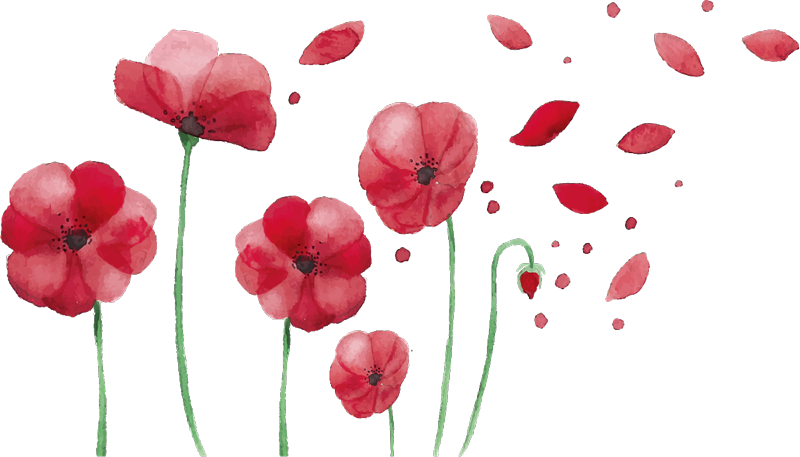 TenStickers. Wall stickers bedroom poppy flowers. Poppy flower wall sticker,  beautiful flowers! Poppyflower wall stickers would be perfect for the bedroom decoration. Red flower wall sticker!