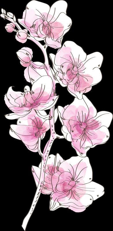 TenStickers. Sticker Mural Orchidées Aquarellées. Rien de tel que cet autocollant mural dessin pour illuminer votre intérieur en toute originalité avec ces orchidées au style aquarelle