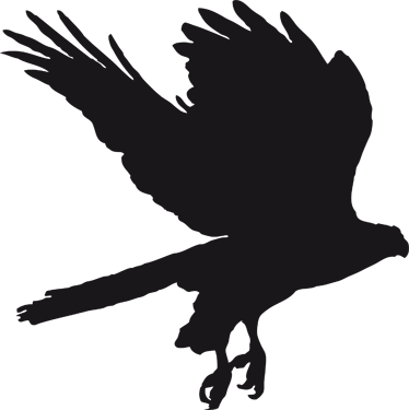 Eagle Silhouette : ✓ free for commercial use ✓ high quality images.