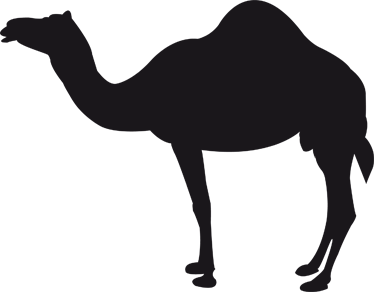 TENSTICKERS. ラクダシルエット黒板ステッカー. ラクダの黒板ステッカーシルエットイラスト。どんな部屋を飾るのにも理想的なスレートステッカーデザイン