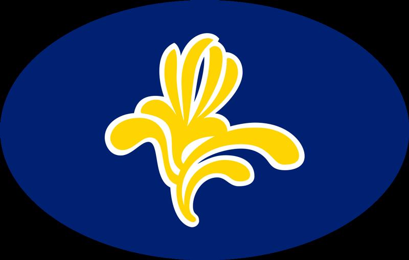 TenStickers. Autostickers vlag Brussel. Autosticker vlag Brussel. Wij hebben brussel logo autoruit stickers, brussel logo autobumper stickers, Brussel logo sticker en brussel vlag stickers!