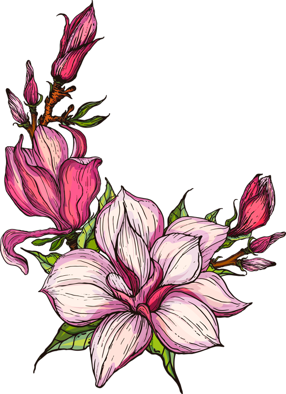 TenStickers. Magnolia drawing Home Wall Sticker. The flower of magnolia is a beautiful symbol of peace and calm.  Give your walls a fresh new look for spring with this detailed design of magnolia.