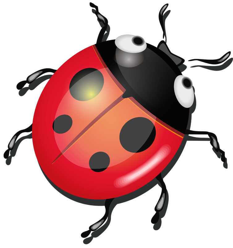 TenStickers. ladybug laptop skin. Decorative insect laptop sticker made of ladybug design. Available in nay required size and easy to apply. Highly adhesive and durable.