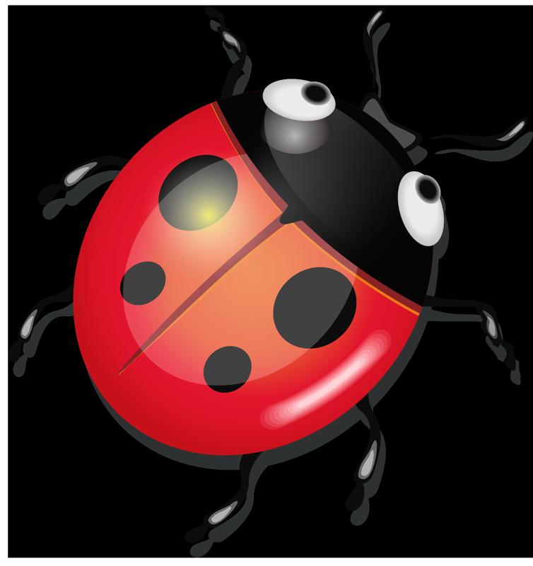TenStickers. 무당 벌레 노트북 스킨. 무당 벌레 디자인으로 만든 장식 곤충 노트북 스티커. 필요한 크기로 제공되며 적용하기 쉽습니다. 높은 접착력과 내구성.