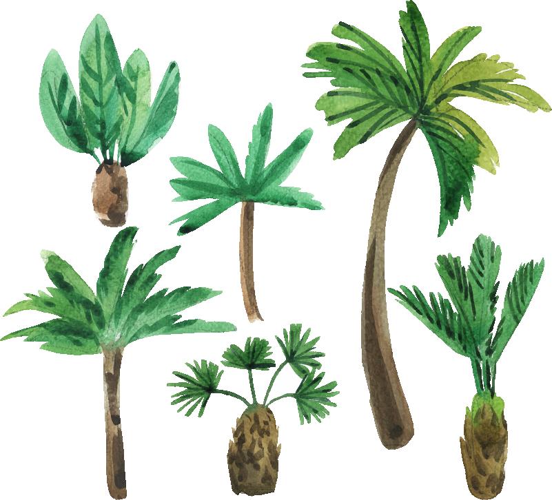 TenStickers. Sticker dell'albero di stili di palma. Adesivo decorativo da parete per la casa con il design di palme collettive. Disponibile in qualsiasi dimensione richiesta.