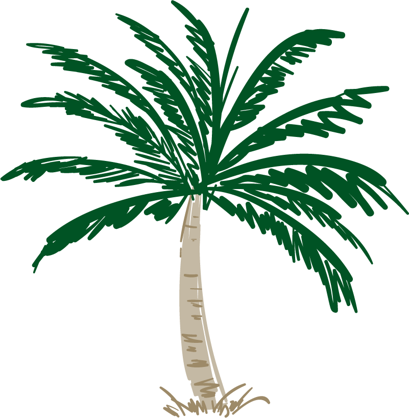 TenStickers. Palm tree strokes tree wall decal. An original green palm tree wall art sticker to decorate any space in the home. Easy to apply and self adhesive. Highly durable.