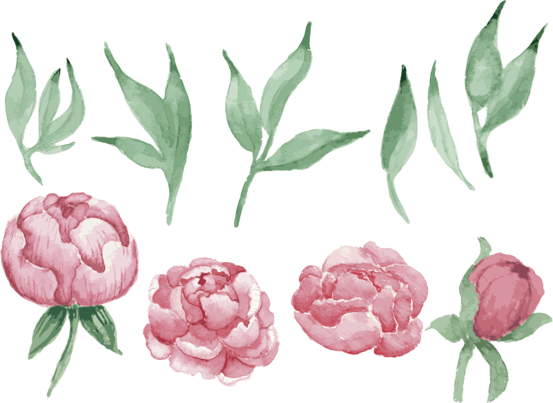 TenStickers. Pink peonies flower wall decal. Decorative home vinyl wall decalwith the design of pink peonies flower plant. Easy to apply and available in different size options.