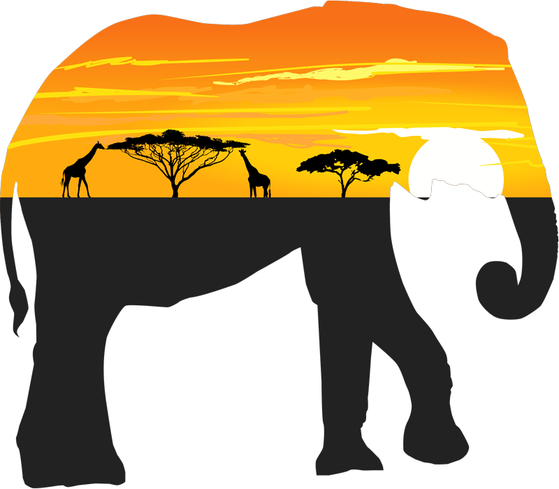 TenStickers. Elephant landscape Africa wild animal sticker. Decorative pride of Africa animal wall art sticker with the design of a giant elephant and landscape in the most amazing view .