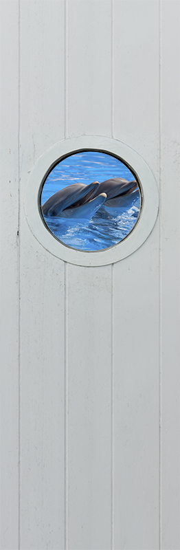 TenStickers. Ocean with dolphins glass door decal. 3D visual effect dolphin door decal designed with the real appearance of a dolphin in the ocean. Choose it in the best suitable size.