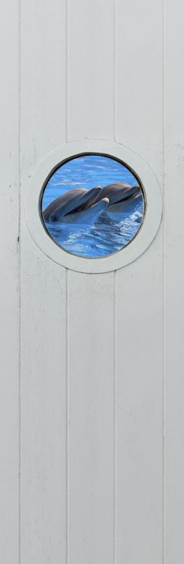 TenStickers. 돌고래 유리 문 데칼과 바다. 바다에서 돌고래의 실제 모양으로 설계된 3d 시각 효과 돌고래 문 데칼. 가장 적합한 크기로 선택하십시오.