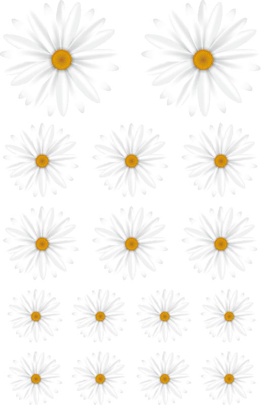 TenStickers. Sticker Mural Motifs de marguerites. Représentant des marguerites de différentes tailles ce sticker mural fleur s'adaptera parfaitement à la décoration de votre salon ou de votre chambre.