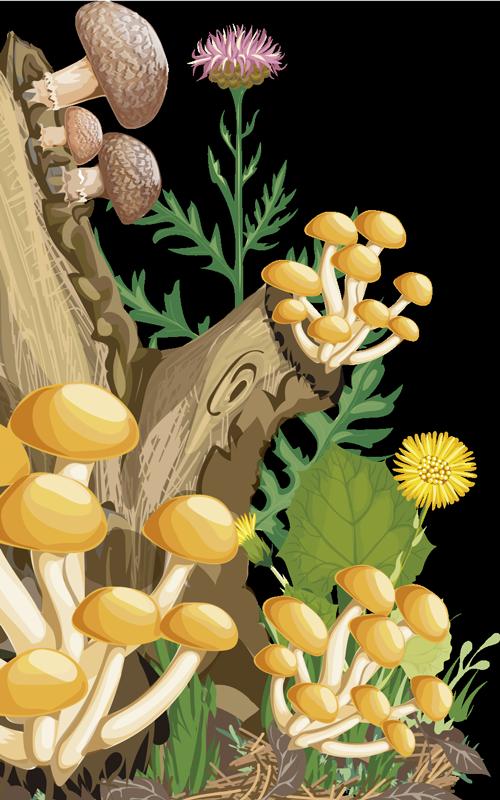 TenStickers. Sticker Maison arbre et champignons. Restez proche de la nature avec ce sticker arbre et champignon pour porte. Facile d'application et service client rapide.