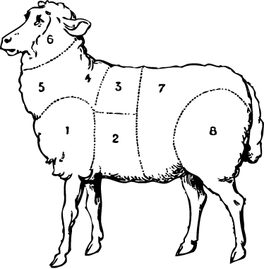 TenStickers. Sheep Body Parts Wall Sticker. Wall Stickers - Silhouette outline of a sheep highlighting the various parts of the body. Available in a variety of colours and sizes.