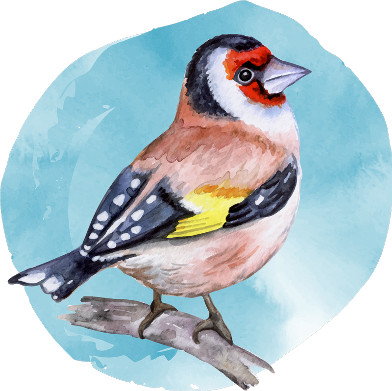 TENSTICKERS. 鳥の枝に鳥のステッカー. 木の枝の上に立って設計された現実的な色とりどりの鳥の壁アートステッカー。どんな平らな面にも素晴らしい装飾を施し、簡単に貼り付けることができます。